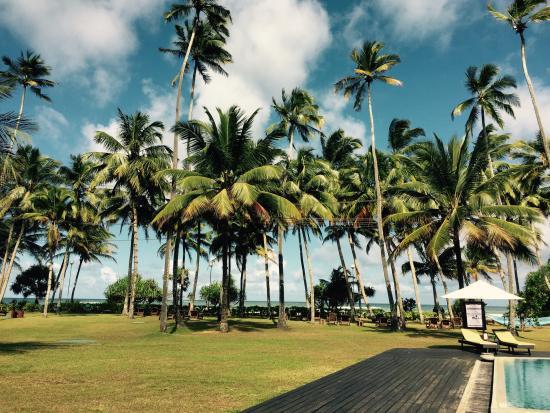 Avani Bentota Resort Photo