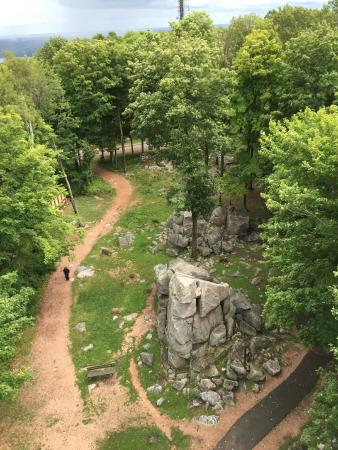 Rib Mountain State Park : View from the lookout tower down!