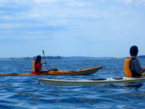 Deer Isle, ME: Kayaking near Brooklin, ME with Driftwood Kayak