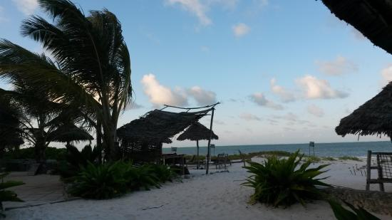 Kilima Kidogo Bar & Restaurant: table with a view