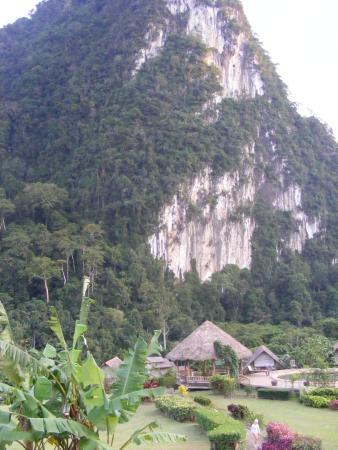 The Cliff & River Jungle Resort: территория