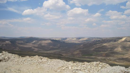 Fossil Safari at Warfield Fossil Quarries : View of high desert terrain at Warfield's fossil quarry