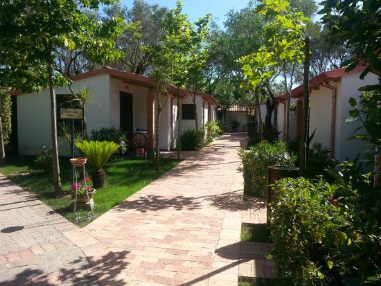 Biberoneria villaggio picture of cilento resort for Disegni di bungalow contemporanei