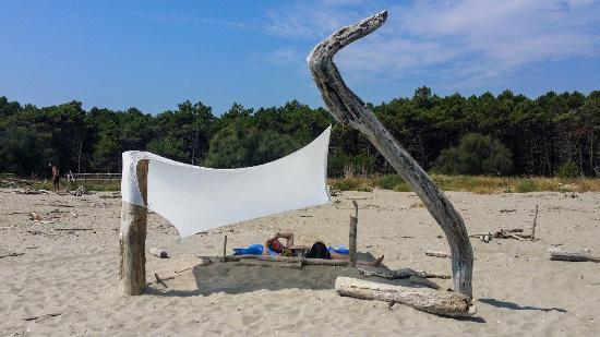 Pineta di Classe: Architetture da spiaggia