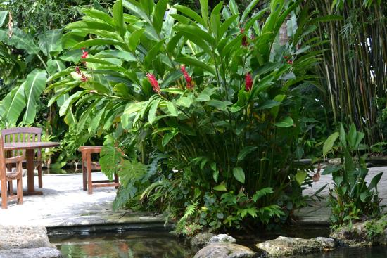 Sundy House : Pool area