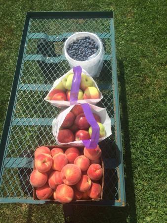 Tougas Family Farm: Pears, apples, blueberries!!