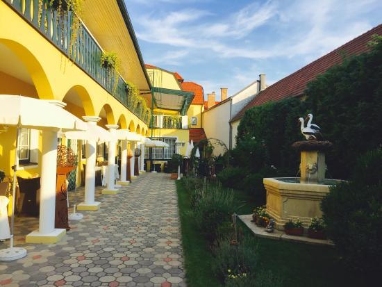 Velocità datazione Wiener Neustadt