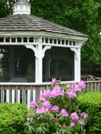 Tuckerton, NJ: Garden