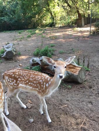 Parco Naturale di Cervia