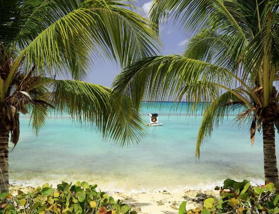 Bayahíbe, República Dominicana: Pláž Bayahibe