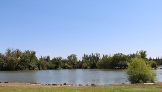 Woodward Regional Park: The Pond