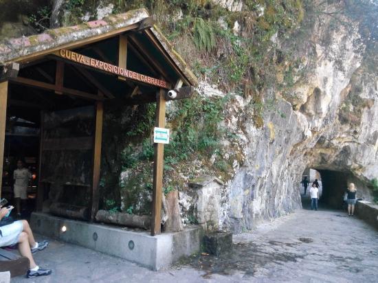 Fundacion Cabrales Cueva Exposicion Queso Cabrales