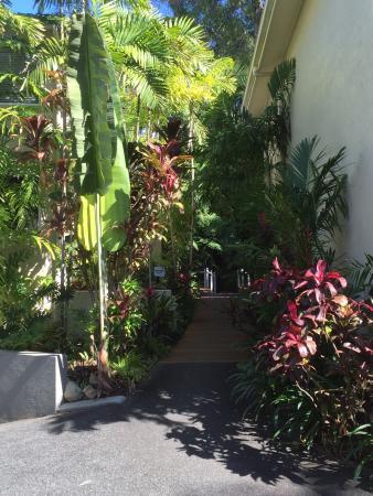 Palm Cove Tropic Apartments : photo0.jpg