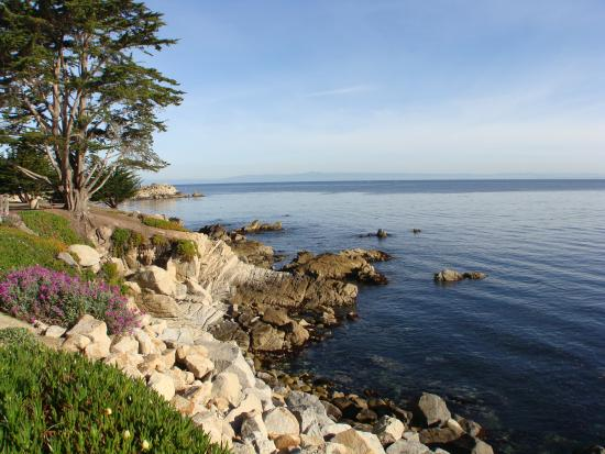 best beaches around monterey travel guide on tripadvisor