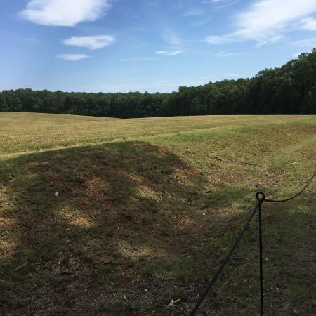 Locust Grove, VA: Confederate trenches on Sanders Field