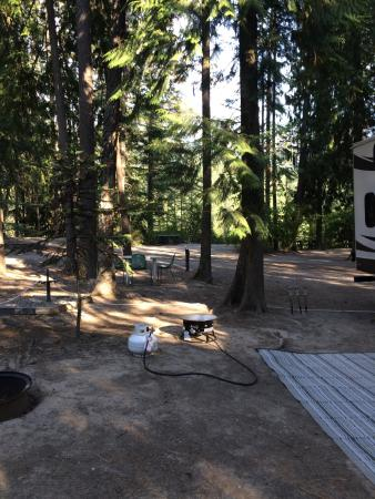Sparwood, Canada: Campsites in the cedars; the volleyball court, washrooms and the Cantena, a place to hang out.