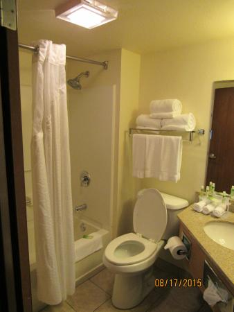 Holiday Inn Express Hotel & Suites Branson 76 Central: bathroom