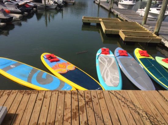 Jersey Shore Adventures Standup Paddle Boarding: Sample of standup paddle boards for rent