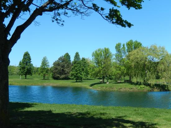 North Ponds Park