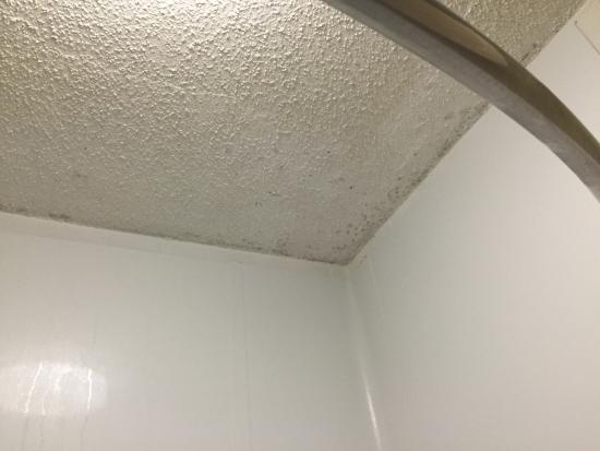 Mold on the ceiling bathroom photo de best western for Mold removal bathroom ceiling
