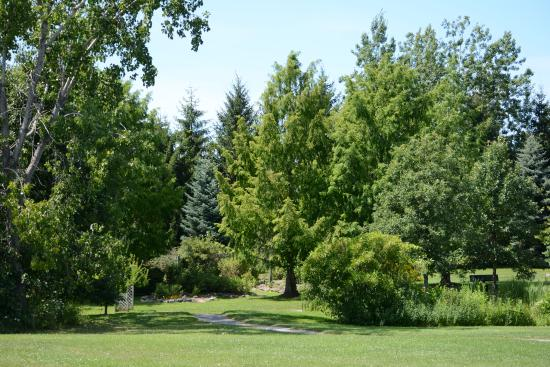 Webster, NY: Trees at the Arboretum