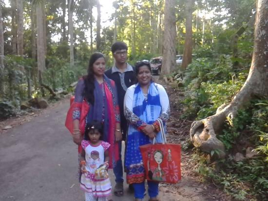 Sreemangal, Bangladesh: inside the forest