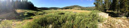 Nine Quarter Circle Ranch: Just part of the amazing scenery.