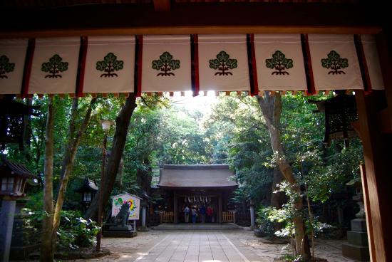 Suwa Shrine : 諏訪神社