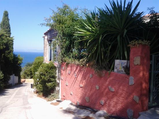 Terrasse jardin et terrasse en etage apero naturiste mais pas integriste picture of la fourmi - Terrasse et jardin ...