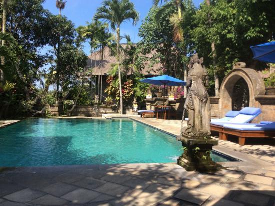 Alam Jiwa: Swimming pool