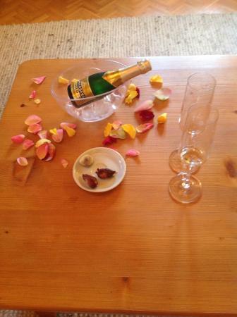 Hotel Almrausch: Questa è la foto della sorpresa che abbiamo trovato nell'appartamento prima della partenz