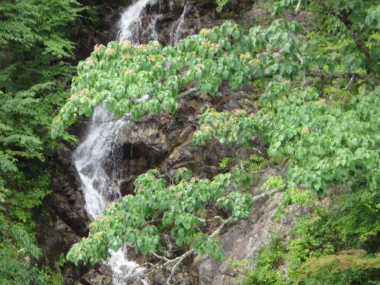 Mitoo Waterfalls