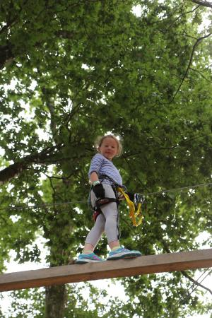 Le Grand Défi : Our 7 year old up a tree