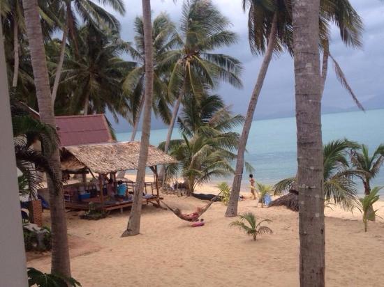 Palm Point Village: photo0.jpg