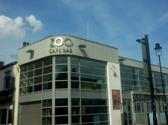 ‪The Zoo Bar‬