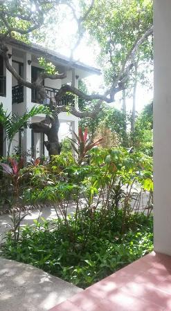 Lamai Wanta: View from room