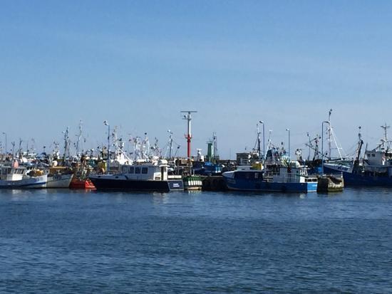 Port Morski Władysławowo