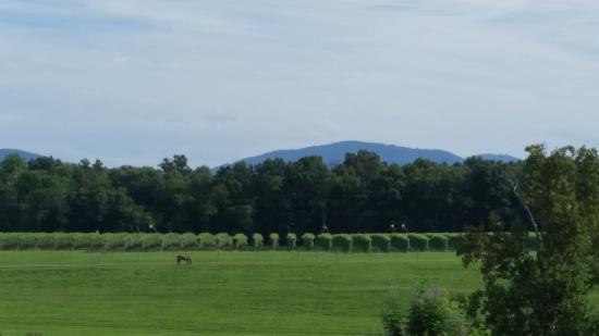 Crozet, VA: Beautiful views