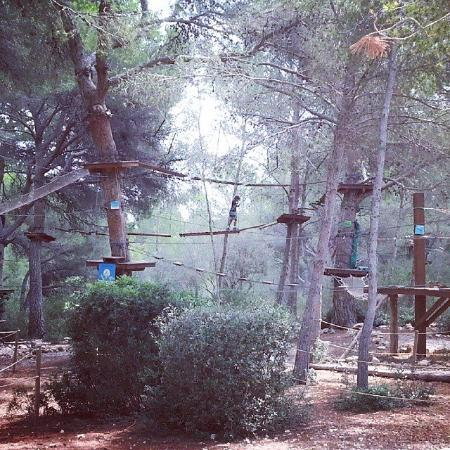 Джангл Парк - Picture of Jungle Parc, Santa Ponsa - TripAdvisor