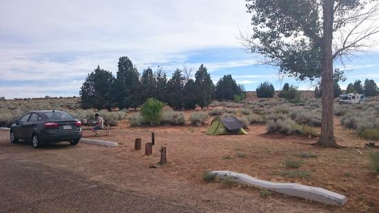 Wahweap Campground: Camping