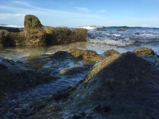 Bathtub Reef Beach: Bathtub Reef