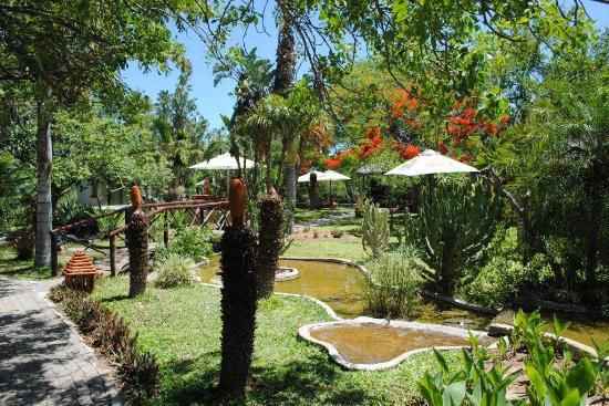 Tremisana Game Lodge: Tremisana's beautiful gardens