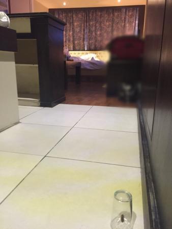 Grand Hotel Beirut: Cockroach ...