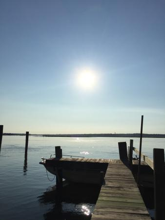 Tom's Cove Park : Our spot was on the bay, we were able to drop out kayaks right in the water from our campsite an