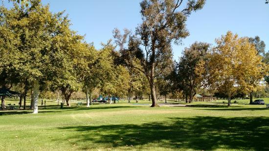 威廉梅森地区公园