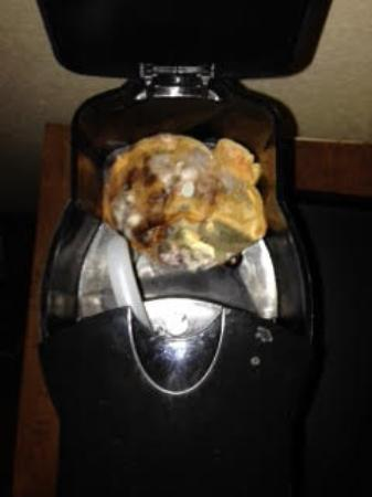 Ramada Westshore Tampa Airport: This is the coffee pot in the room.  I opened it and almost threw up. It was really nasty. I did