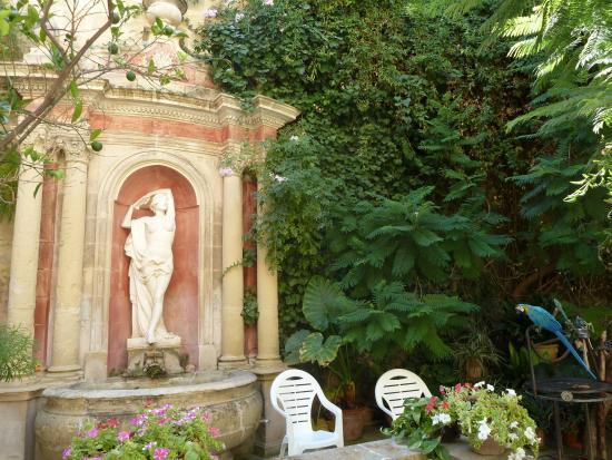 Kiku in the garden - Picture of Casa Rocca Piccola, Valletta ...
