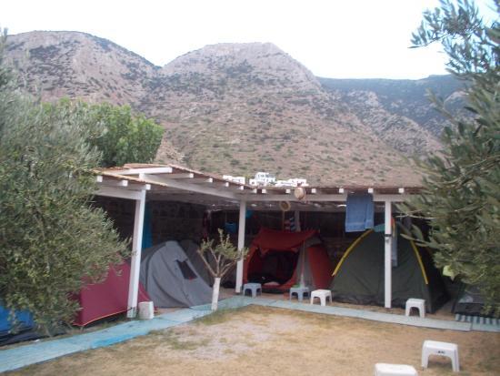 Camping Makis: Camping area