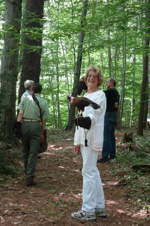 Green Mountain Falconry School : Walking in the woods