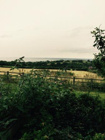 Dolphin, UK: View from the cottage